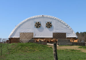 New Barn Roof 3